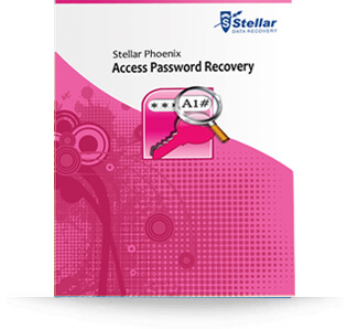 Stellar Access Password Recovery